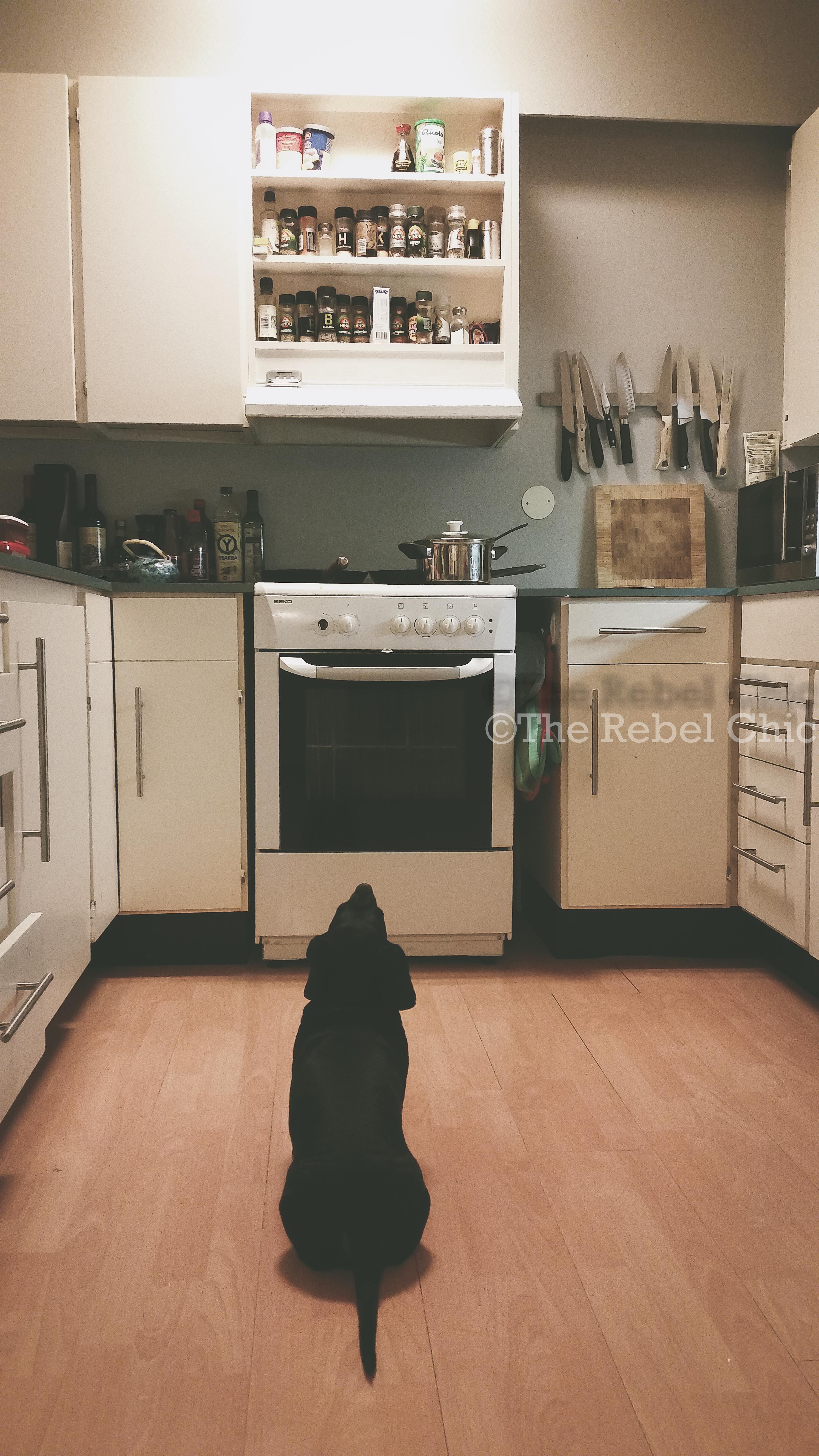 zorro kitchen shot-3